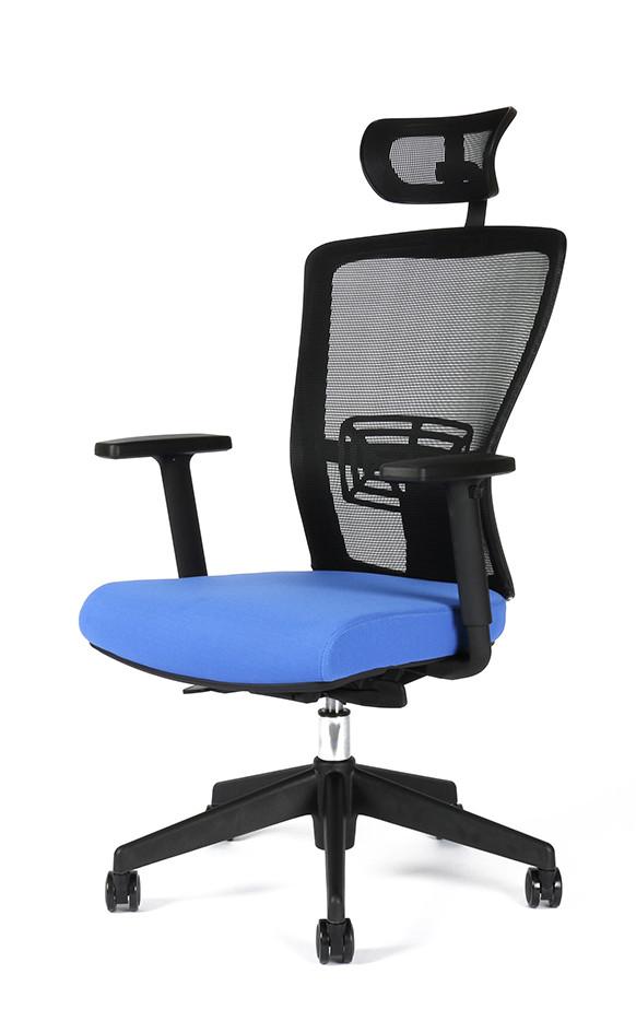 Office Pro Themis SP